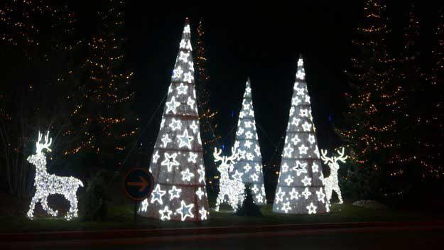 Tree Lights Gala Lights Ltd