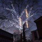 The Pantiles, Royal Tunbridge Wells Christmas lights and tree lights